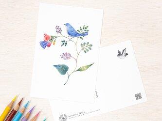 """5枚セット。絵本のような。ポストカード """"青色の小鳥と草花"""" PC-71の画像"""