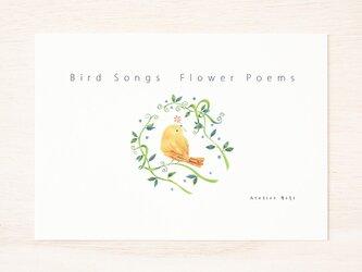 """小鳥のさえずり。詩画集 """"鳥の声 花の詩"""" PB-1の画像"""