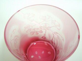 桜のグラス【正規品】の画像