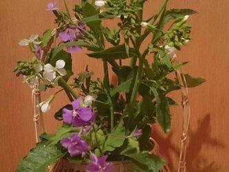 ミニ宗全かご(そうぜんかご・花籠)の画像
