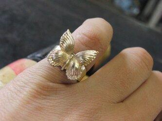 バタフライ真鍮ブラスリング 指輪サイズ調整無料/タイリング,トゥリングにもの画像