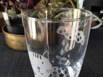 グラス 小  猫と雨雲の画像