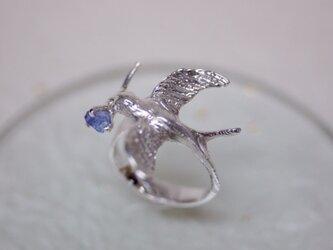 【受注製作】A happy swallow ring 〜幸運の使者〜の画像
