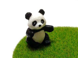 芝生コースター【パンダ】の画像