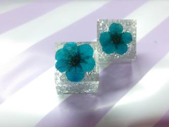 青いお花と銀色のキラキララメのキューブピアスの画像