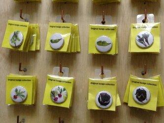 【送料無料】山形県 在来野菜 缶バッチ (10個)の画像