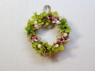 グリーンいっぱい♡可愛い春のミニリース♪の画像