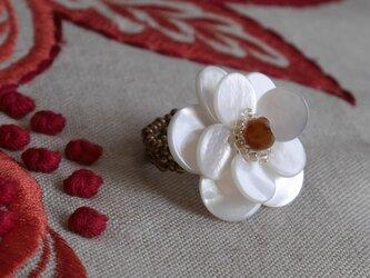 白蝶貝のリングの画像