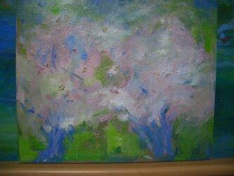 桜、さくら・・・の画像