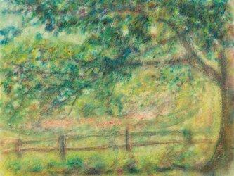 オイルクレヨン原画-771の画像