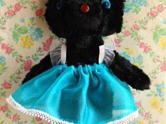 黒猫ちゃん (バレリーナ)の画像