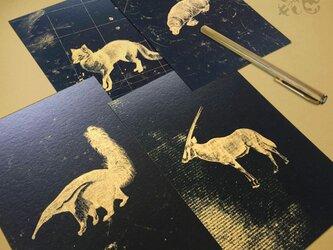 黄昏時の動物達 ポストカード(4枚入り)の画像