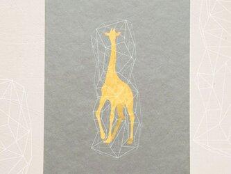 キリンのポストカード(3枚入り)の画像