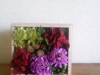 ダリアの木の箱アレンジの画像