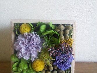 紫の花の木の箱アレンジの画像