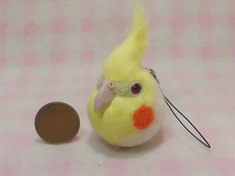 羊毛フェルト 小鳥ストラップ・イヤホンジャック たこ焼き大玉(?)サイズ♪ / オカメインコ ルチノーの画像