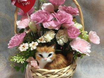 カーネーションと茶トラ猫ちゃんのバスケットアレンジ L ピンクの画像