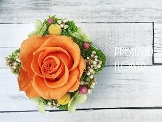 小さなローズの贈り物 『プチケーキ』 ビタミンオレンジ  プレゼント ギフトの画像