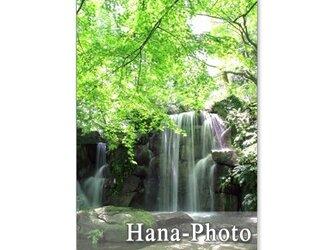 1091) 美しい新緑と水の風景   ポストカード5枚組の画像