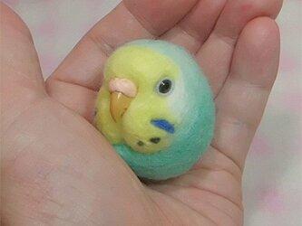 ☆選べる2タイプ☆ コロコロ♪ 羊毛の小鳥  セキセイ レインボー ミントブルー☆選べる鼻の色の画像