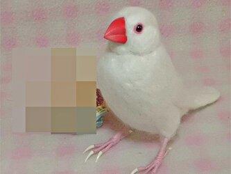 リアルサイズ♪ 白文鳥 羊毛フェルト☆クチバシの色相談可能 ♪の画像