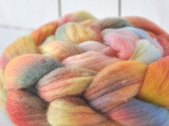 羊毛(メリノ トップ) 120g 【02】の画像