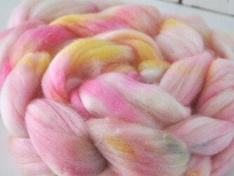 羊毛(メリノ トップ) 120g 【01】の画像