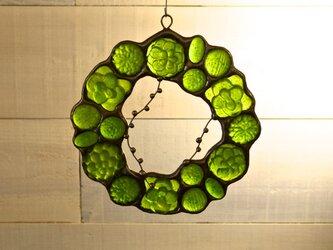 ガラスのリース [多肉植物]Sの画像