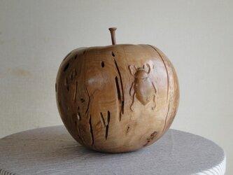 りんごとコガネムシの画像