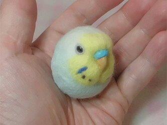 ☆選べる2タイプ☆ コロコロ♪ 羊毛の小鳥  セキセイ レインボー パステルブルー☆選べる鼻の色の画像