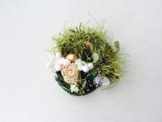 moss ブローチの画像