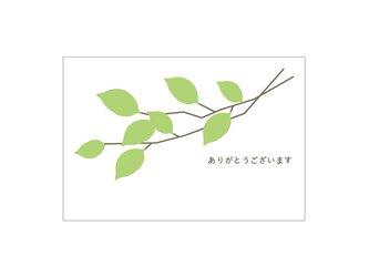 新緑の39cardの画像