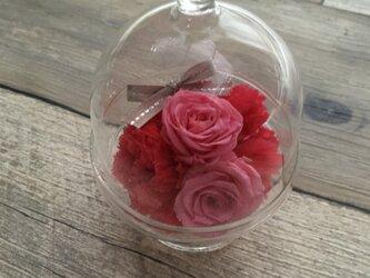 小鳥のガラスドーム Pinkの画像