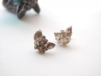 紫陽花のピアス [SILVER950]の画像