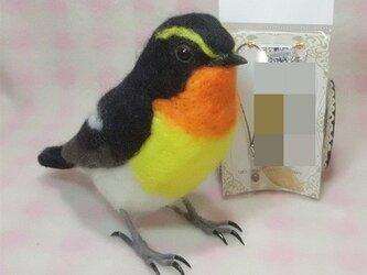 羊毛フェルト リアルサイズ♪ キビタキ  野鳥の画像