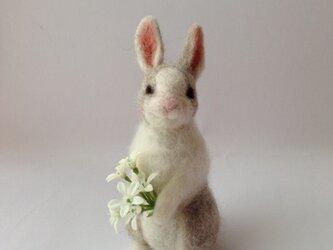 【K様オーダー品】ウサギの画像