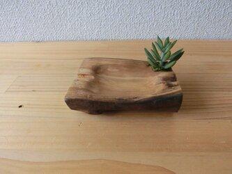 フェイクグリーン付きdrift wood小物置きシリーズの画像