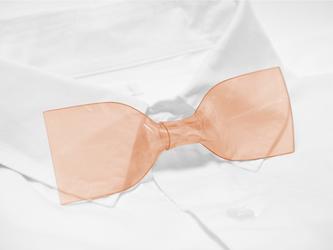 透明超ネクタイ(Tangerine:タンジェリン)の画像