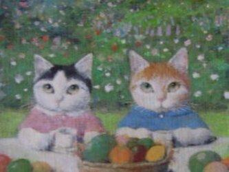 フルーツと子ねこの画像