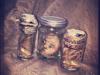 寄生虫標本瓶セットの画像