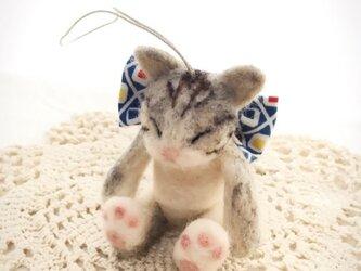 リボン子猫の画像