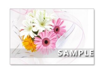 1107) ガーベラとバラの美しい花束 ポストカード5枚組の画像
