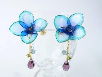 紫陽花イヤリングの画像