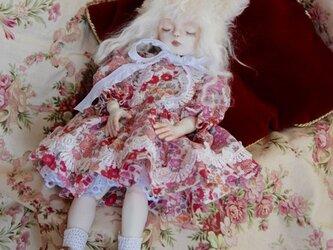 猫耳3 眠り猫の画像