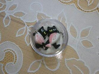 猫一本釣りピアスⅠの画像