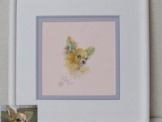 ペットの肖像画 水彩画(D型フレーム判)オーダーメイドの画像