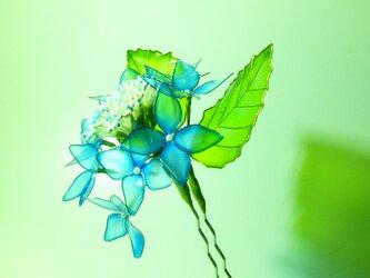 額紫陽花 二本簪の画像