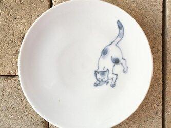 染付4寸猫皿 48の画像
