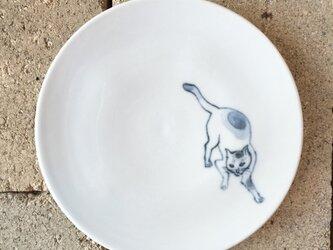 染付4寸猫皿 49の画像