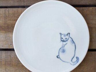 染付4寸猫皿 52の画像
